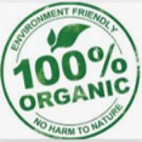 Organic 2